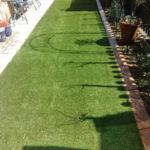 irrigation (10)